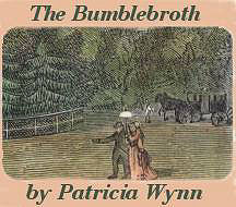 Cover of The Bumblebroth by Patricia Wynn